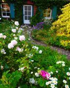 einladender-Vorgarten